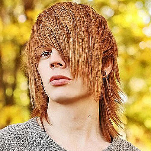 Emo hairstyles for guys with long hair Best Of 19 Emo Hairstyles For Guys